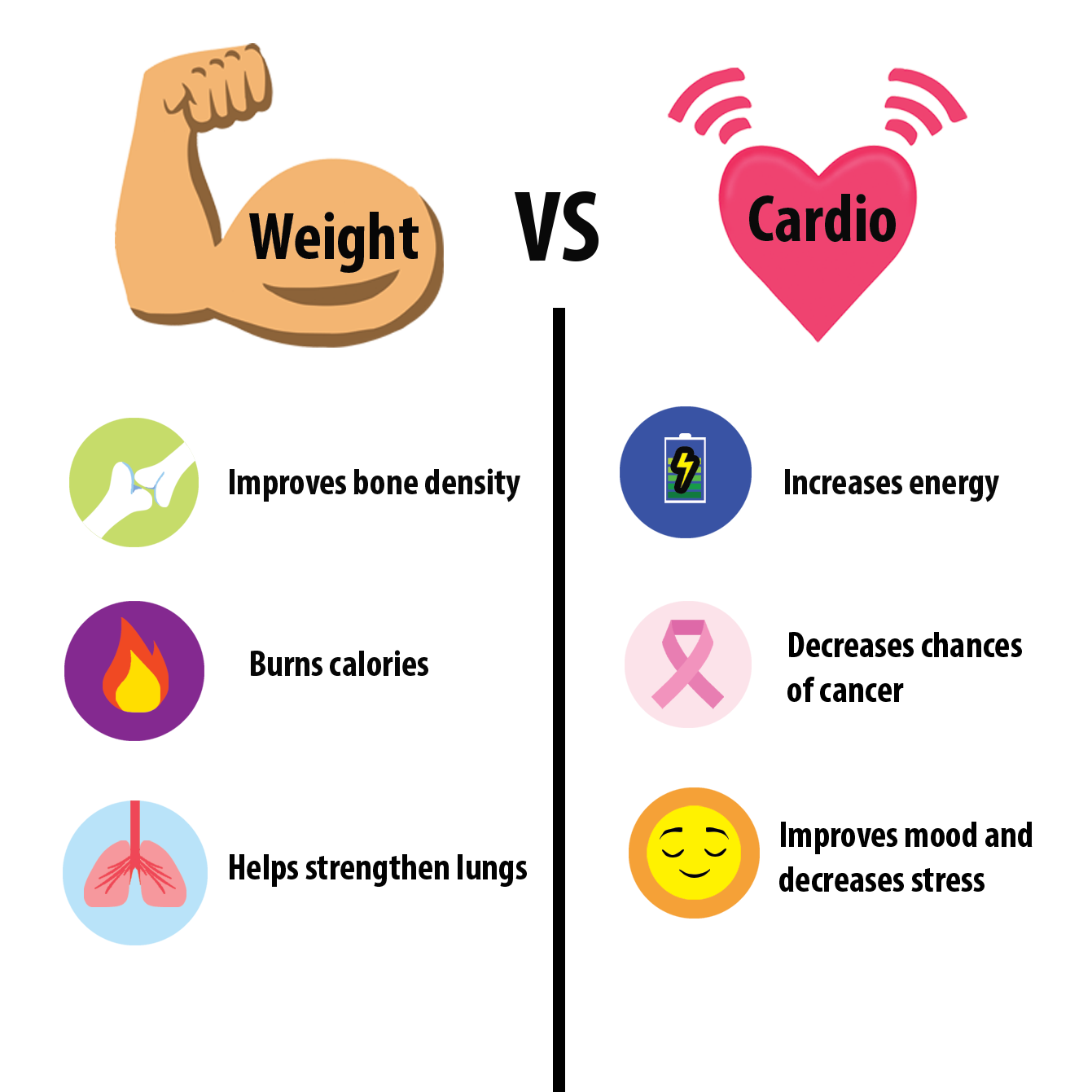 cardio exercises equipment